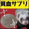 【深刻な貧血】フェレットのための貧血対策サプリメント・リニューアル(鉄剤より凄い)